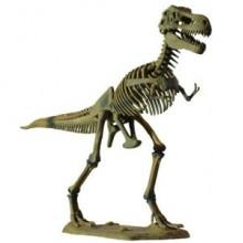 Большой Скелет динозавра - Тираннозавр D501